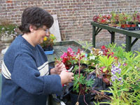 Mary working in Festina Lente's walled gardens